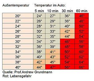 Tabelle Hitzschlag beim Hund gefährliche Temperaturen