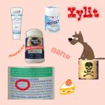 Vergiftung durch Xylit Birkenzucker